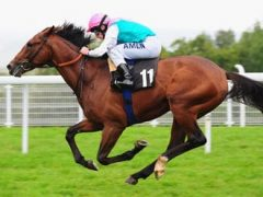 Workforce Goodwood Stakes