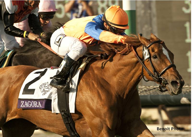 Zagora charges home to win the BC Filly & Mare Turf