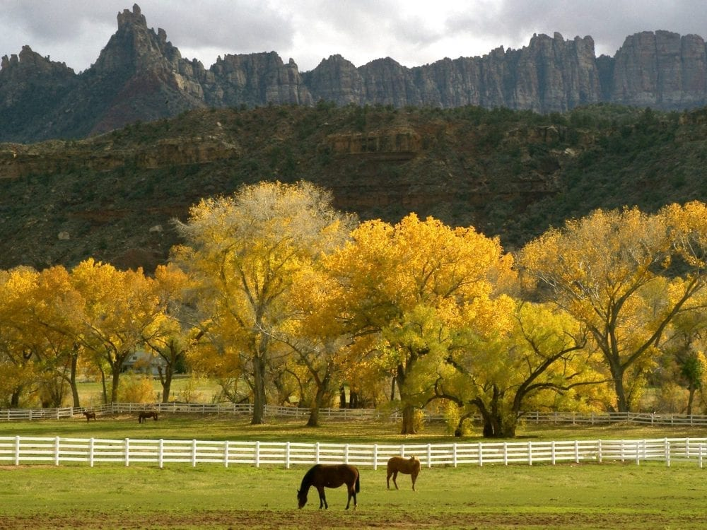 Utah Bill Would Ban Unauthorized Photography On Farms