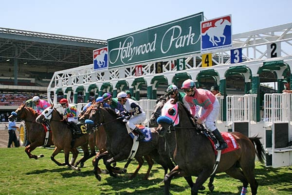 Hollywood Park Starting Gate