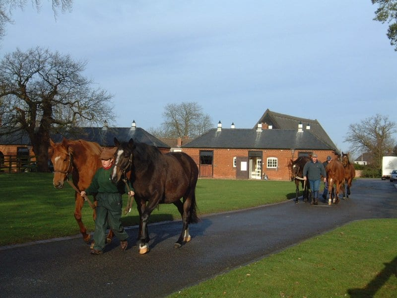 Herald Leader Juddmonte One Of The Most Successful