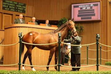 Keeneland Yearling Sale