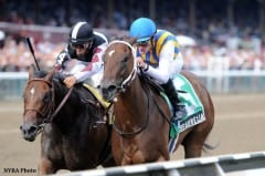 My Miss Aurelia shown winning the Adirondack S. as a 2yo