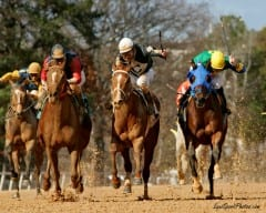 Racing from Oaklawn Park returns to TVG