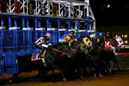 Penn National Live Horse Racing