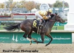 Sign wins Pocahontas Stakes