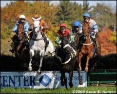 Steeplechasing horses.