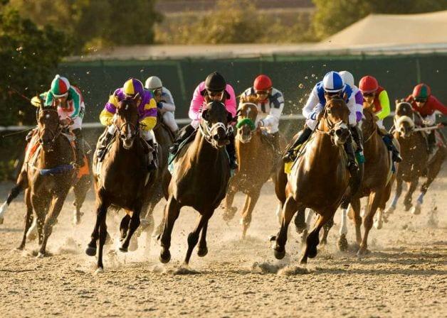 Horse Ne Racing Ag Columbus Park