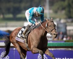 Calidoscopio wins the 2012 Breeders' Cup Marathon, Aaron Gryder up