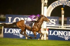 St Nicholas Abbey shown winning the 2013 Dubai Sheema Classic