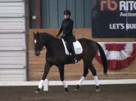 Quiet Wyatt competes at the Gateway Dressage Schooling Show
