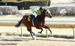 Magna Fortuna won by 9 3/4 lengths at Hawthorne on March 13, 2013