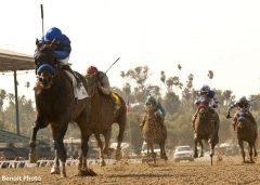 Sky Kingdom wins the Tokyo City Cup Stakes