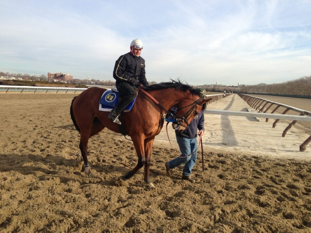 Vyjack With Trainer Rudy Rodriguez After A Morning Workout