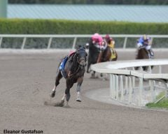 Fort Larned sprints ahead of the field in the Gulfstream Park Handicap