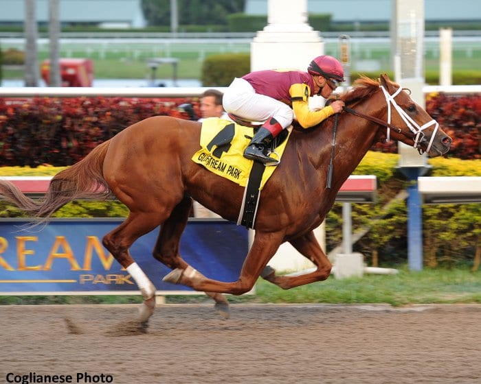 Discreet Dancer wins the Gulfstream Park Handicap