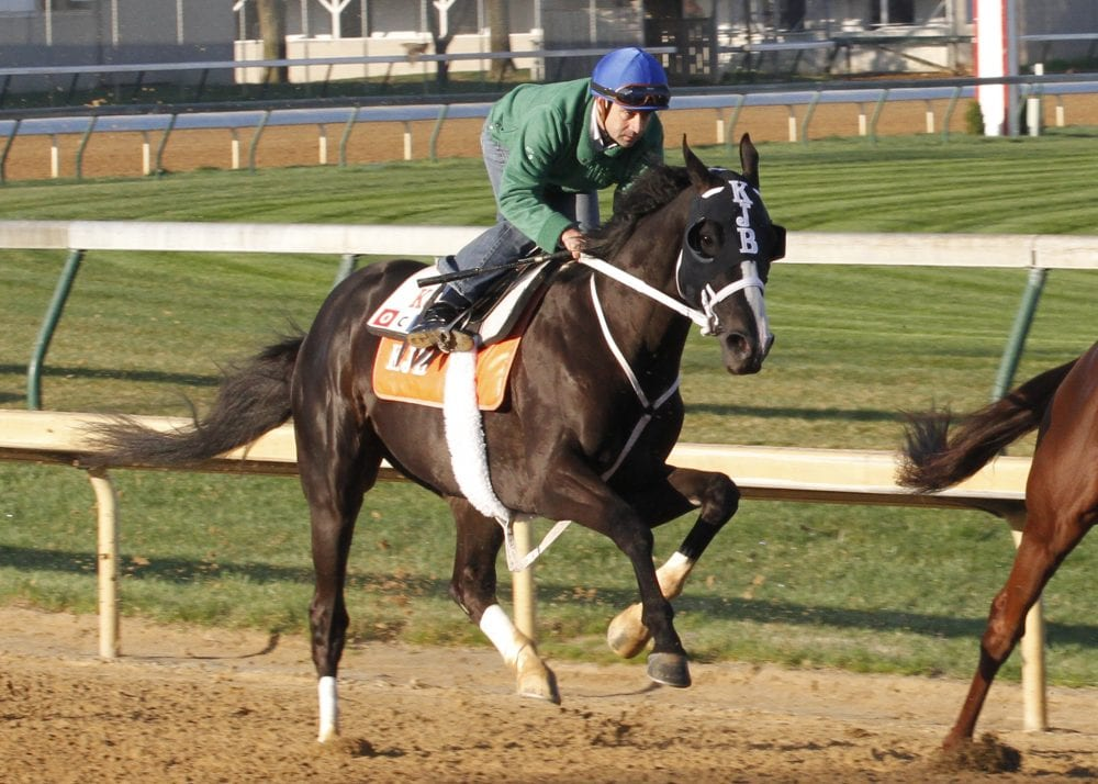 Black Onyx Continues Recovery Horse Racing News