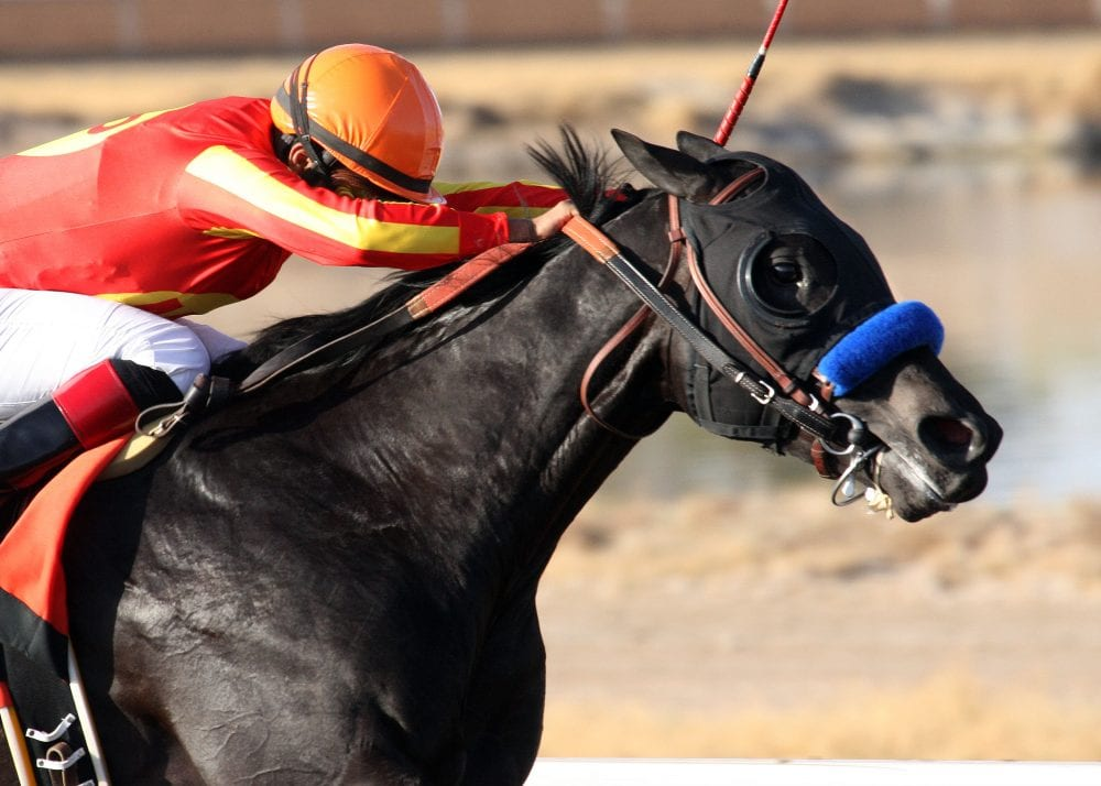 Govenor Charlie draws clear to win Sunland Derby