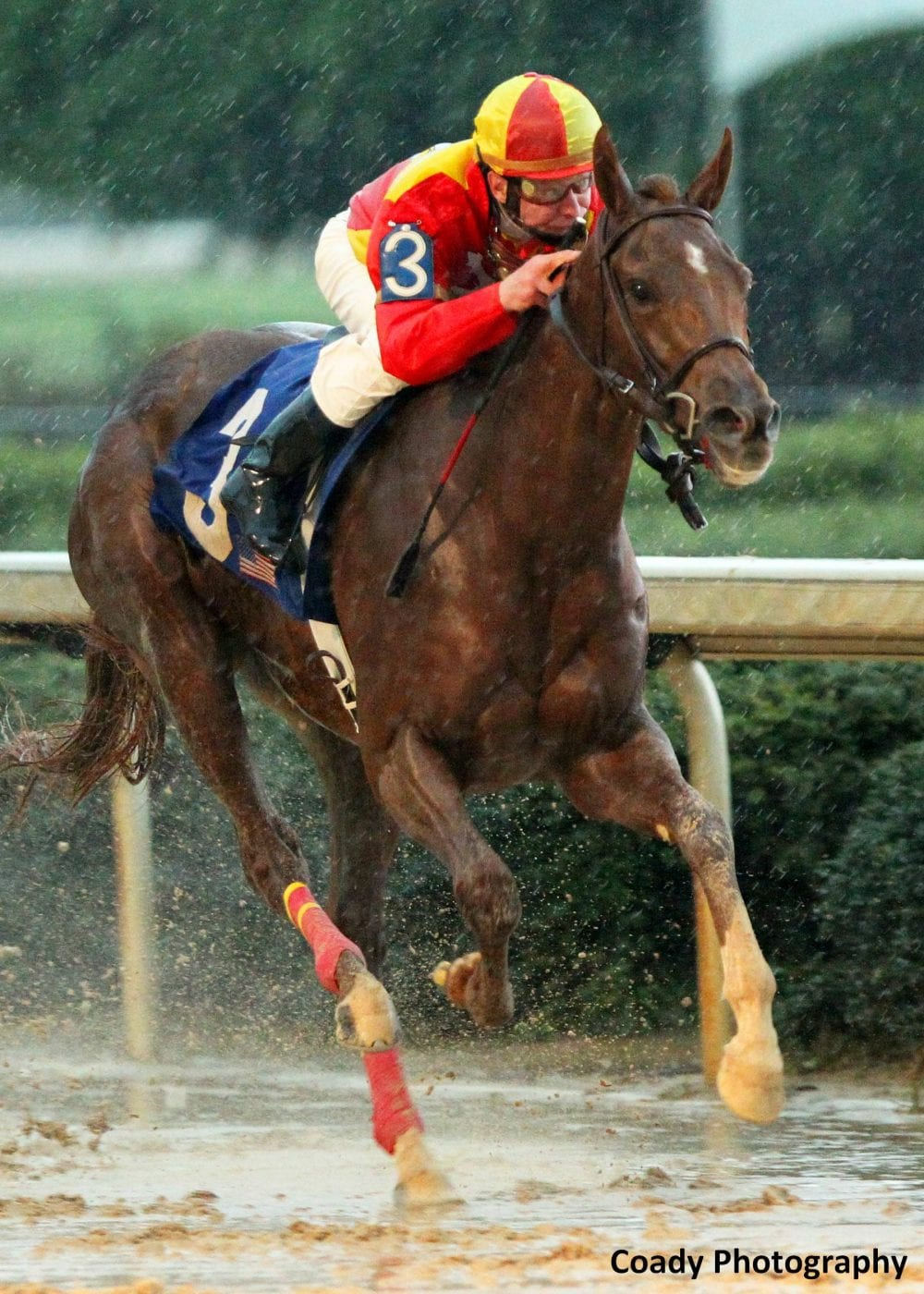 Rose to Gold splashes home to win the 2013 Fantasy Stakes