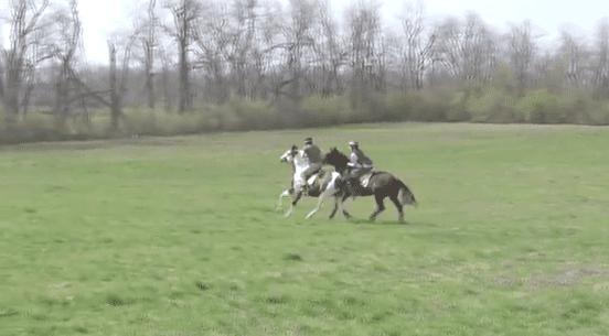 NARA riding lesson