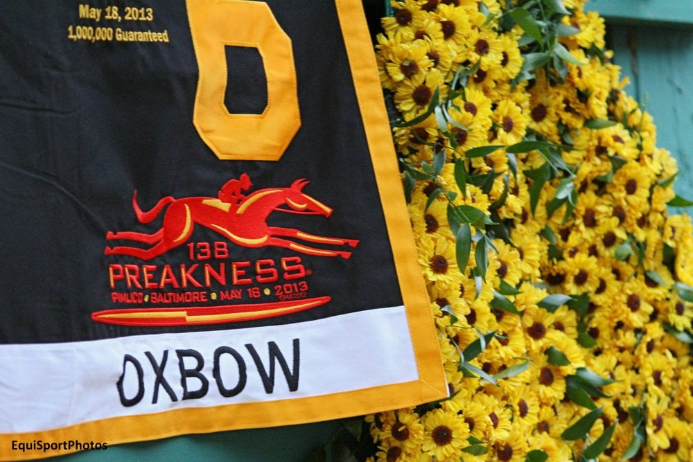 Oxbow's saddle towel & Black-Eyed Susans on display at the barn after Preakness win
