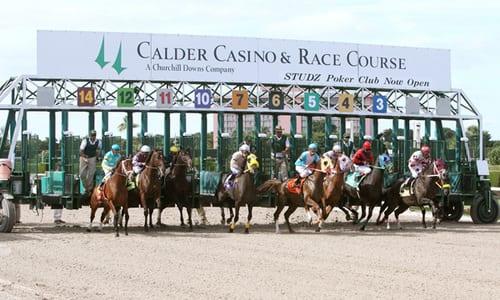 Calder race course casino casino group retail