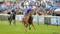 Dawn Approach draws off to win the 2013 Qipco Two Thousand Guineas