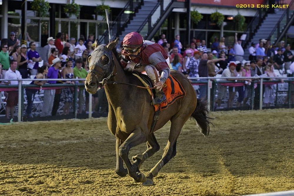 Last Gunfighter Out Draws Field In Pimlico Special Horse