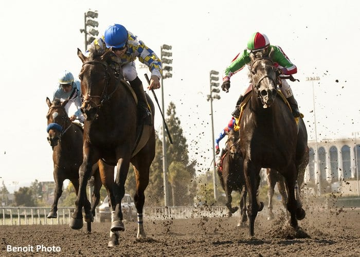 Open Water and jockey Joseph Talamo, left, outleg Lady Of Fifty (Rafael Bejarano), right, to win the Grade II, $150,000 Marjorie L. Everett Handicap, Saturday, May 18, 2013 at Betfair Hollywood Park, Inglewood CA.