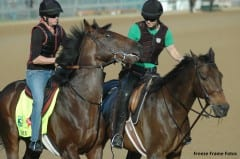 Orb with Well Well (aka Wellie) Derby week