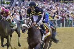Oxbow, Gary Stevens aboard, wins the 138th running of the Preakness Stakes
