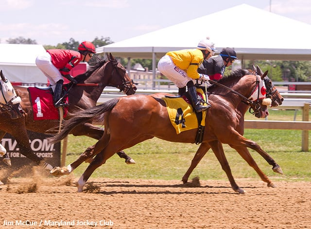 Spicer Cub (No. 4) finishes an uneventful second in his first start after his dramatic Pimlico run