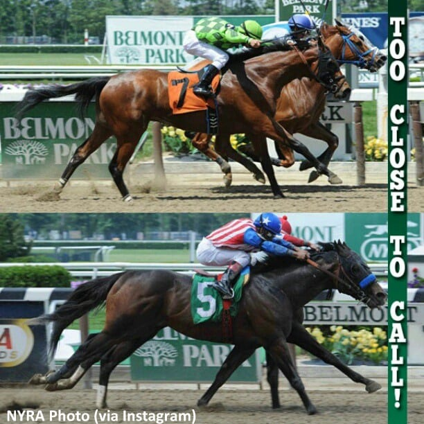 Two races yielded two dead heats at Belmont on May 31