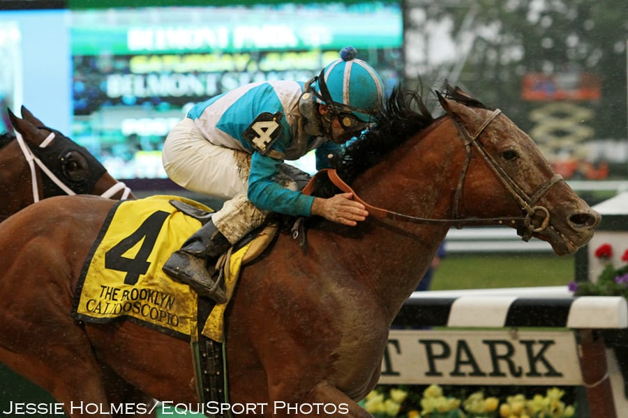 State Farm Report A Claim >> Breeders' Cup Champ Calidoscopio to Stand in Argentina ...