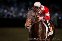Fort Larned wins the Stephen Foster Handicap at Churchill Downs June 16