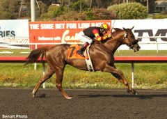 Centralinteligence seen winning the 2013 G1 Triple Bend Handicap at Hollywood Park