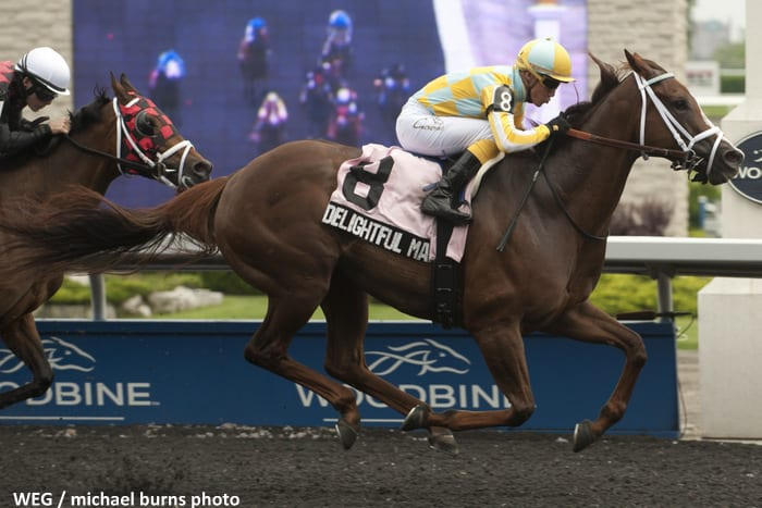 Toronto June 1 2013.Woodbine Racetrack.Hendrie Stakes Delightful Mary Jockey Luis Contreras,WEG/michael burns photo