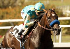 Paynter returned to winning form on June 14, 2013 after overcoming life-threatening medical issues