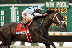Verrazano, seen winning the 2013 Haskell, will make his European debut in the JLT Lockinge Stakes on Saturday