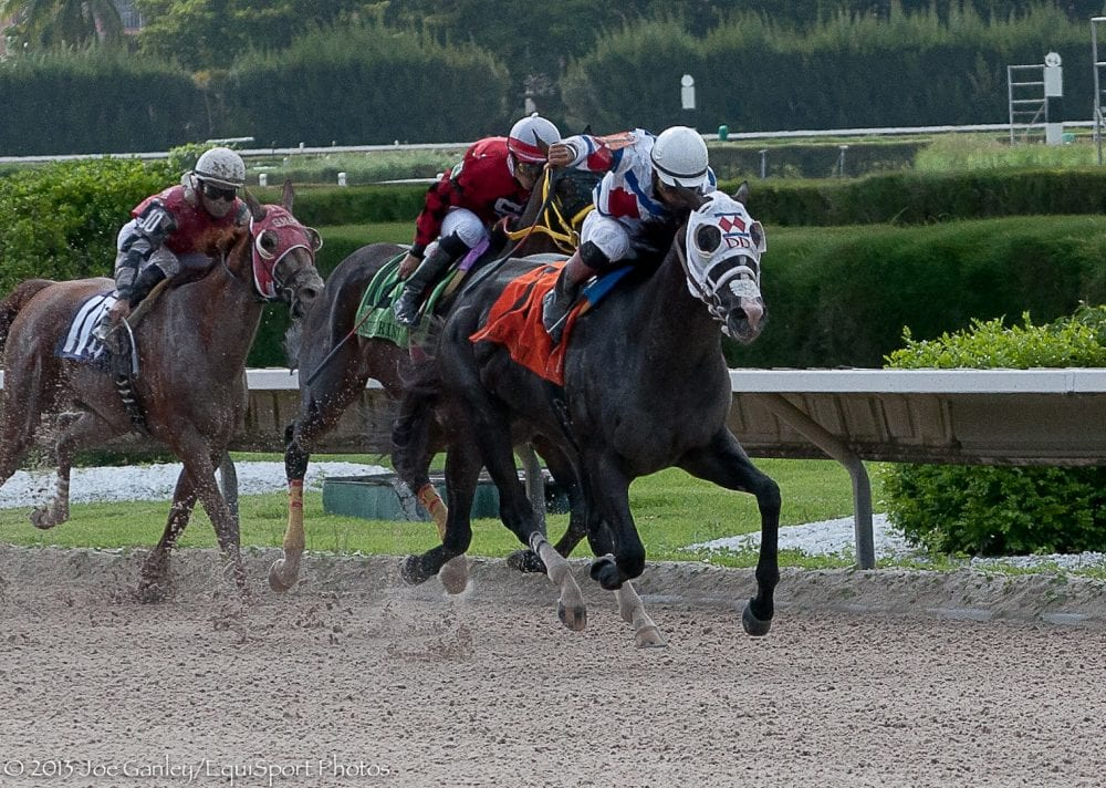 Bahamian Squall captured the 2013 G2 Smile Stakes