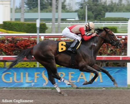 Convocation wins an allowance race at Gulfstream Park March 18, 2010