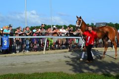 Fans gather to watch the horses parade at Colonial Downs