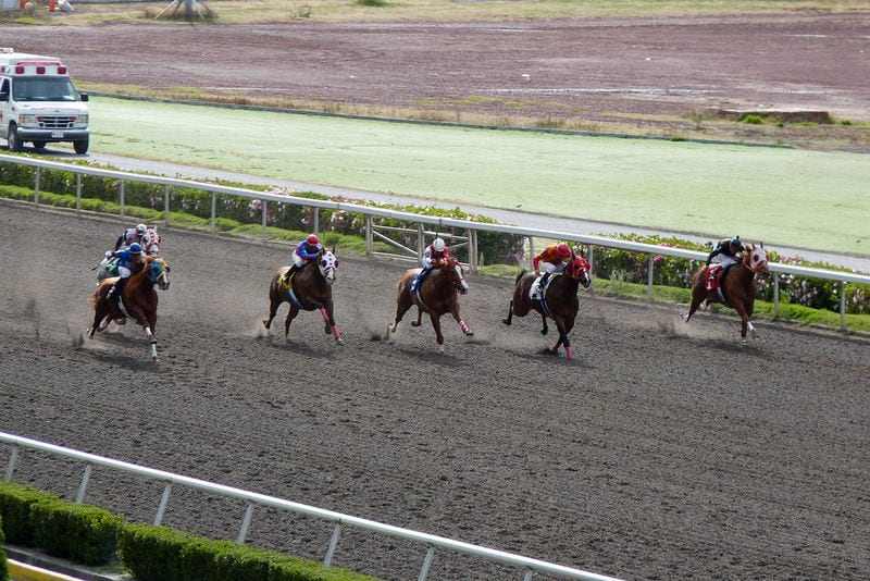 Codere lands deal to simulcast mexico city racing on for Show pool horse racing