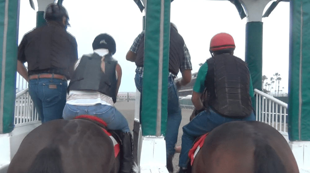 The Del Mar gate crew helps school young horses in the morning.