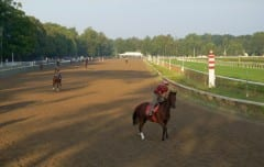 The Saratoga backstretch at 6 a.m. opening day