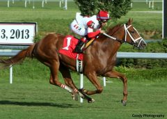 Thank You Marylou wins the Tippett Stakes at Colonial Downs