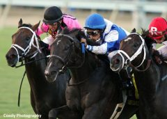 War Dancer (center) wins the Grade 2 Virginia Derby