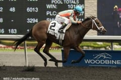 Conquest Whiplash wins the Victoria Stakes June 22