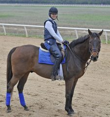 Suzy Haslup on her track pony, Steven Jones, also an OTTB and retired polo pony