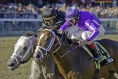 Corfu (rail) edges Wired Bryan to win the Saratoga Special